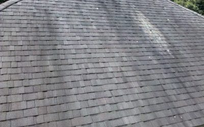 Dark Streaks on Your Roof? Here's Why
