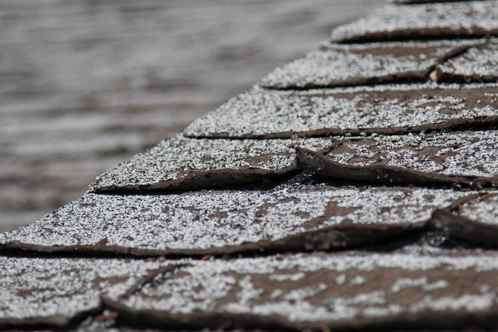 signs of an aging roof with curled shingles