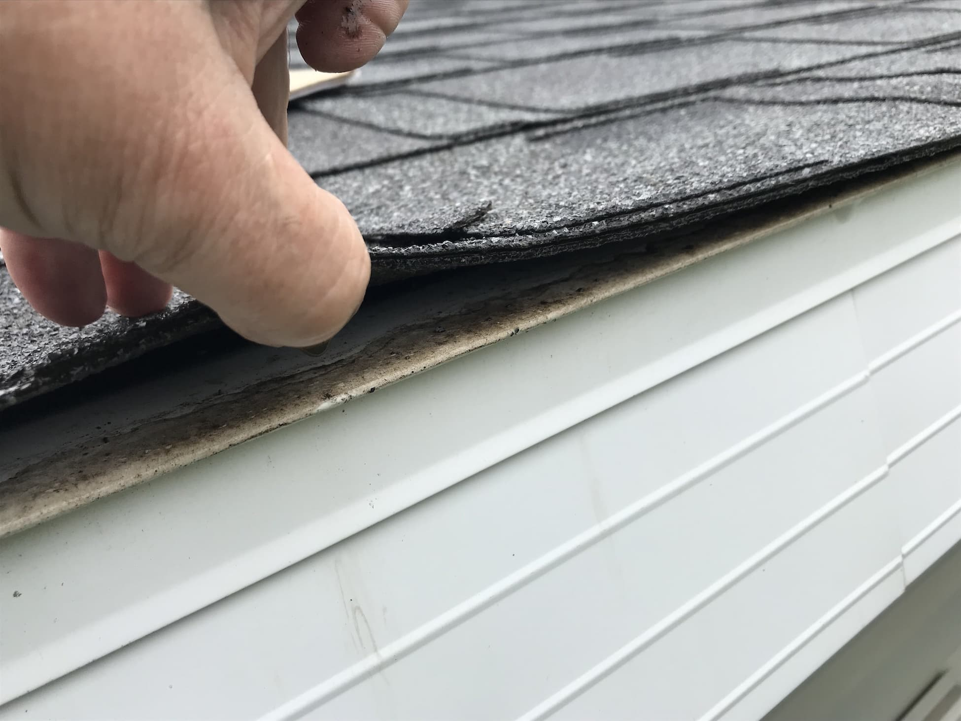 signs you need a roof inspection