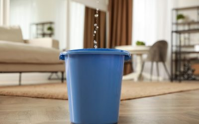 Bucket collecting water from leaking roof